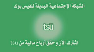 Read more about the article افكار للربح من تسو tsu